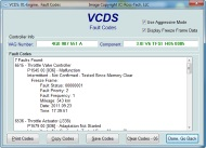 VAG-COM VCDS screenshot